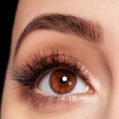 BROW LAMINATION COURSES AT ELITE BEAUTY SCHOOL IN HERTFORDSHIRE
